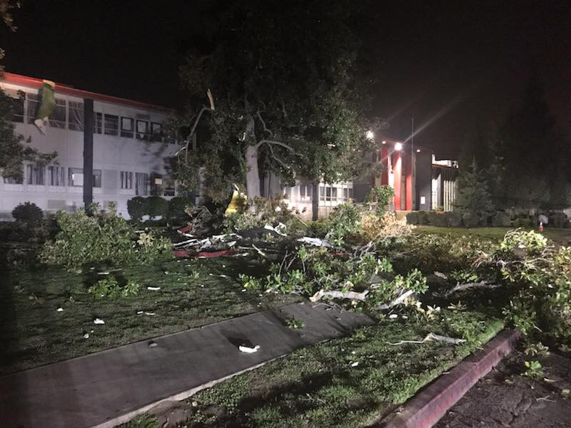 Wind gusts cause tree to snap, damaging Washington Academic Middle Schools roof in Sanger