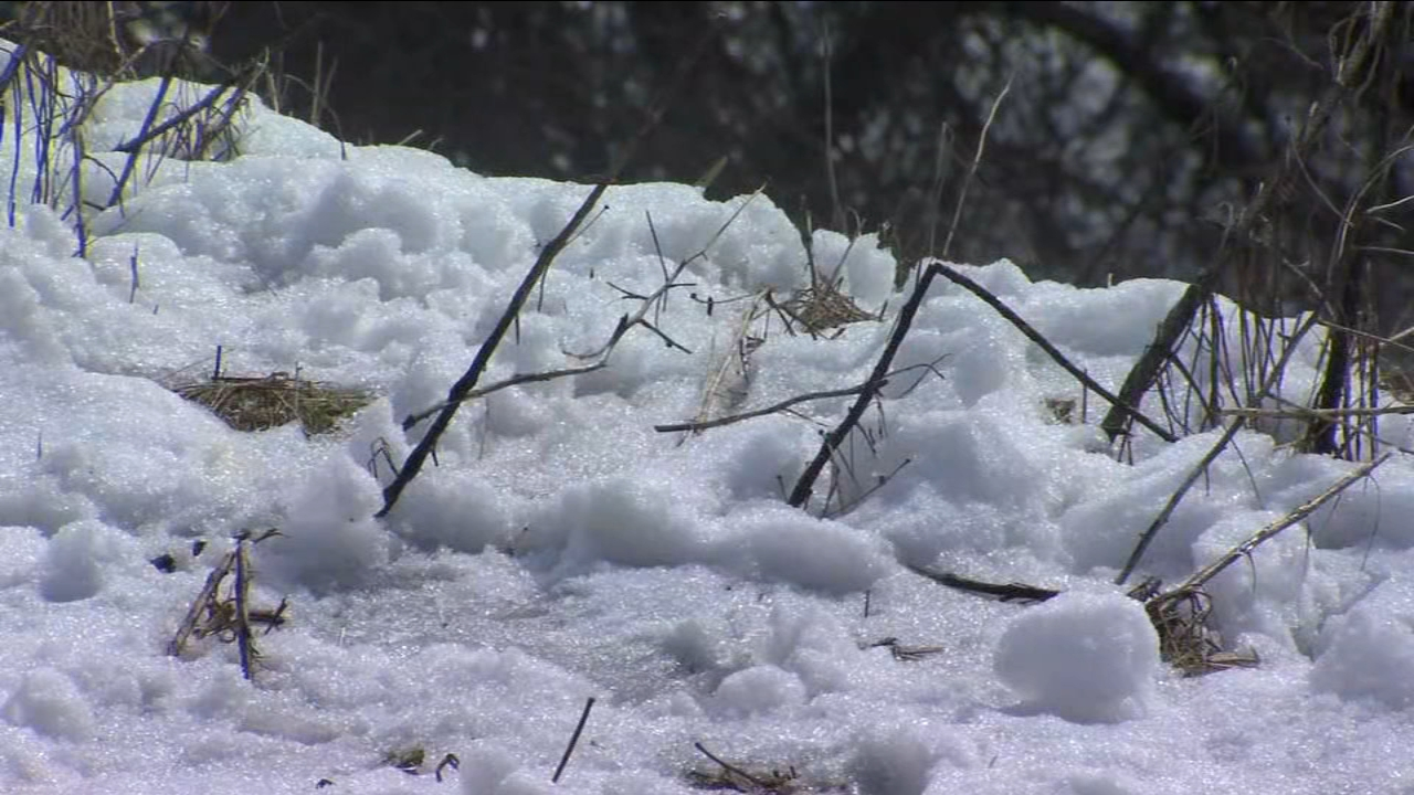 Families used the holiday Monday to play in some of the snow left over by the weekend storm.