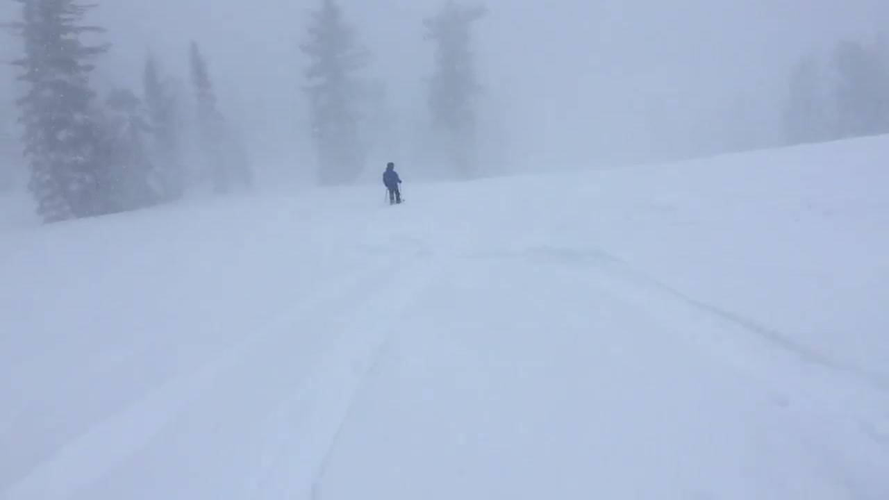The Sierra is getting lots of new snow, here's when you should go