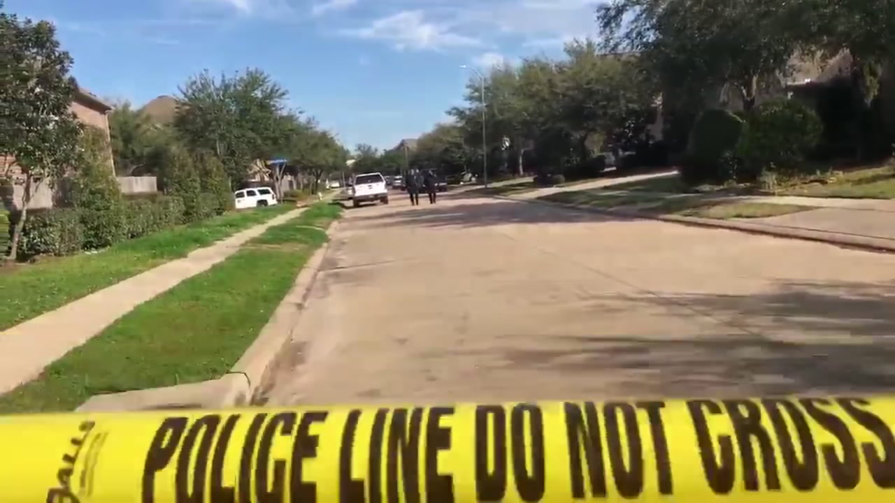 Police say it appears a father shot his wife to death before killing himself at their Sugar Land home.