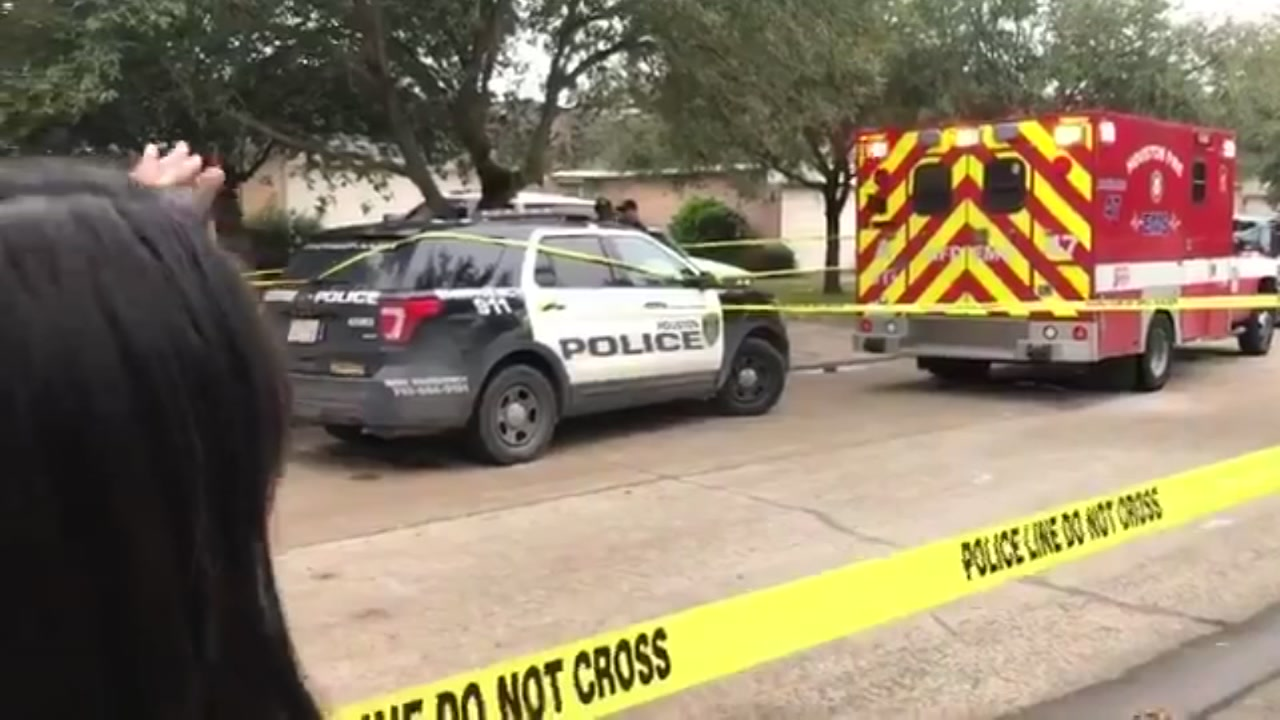 2 men shot and killed inside home in south Houston