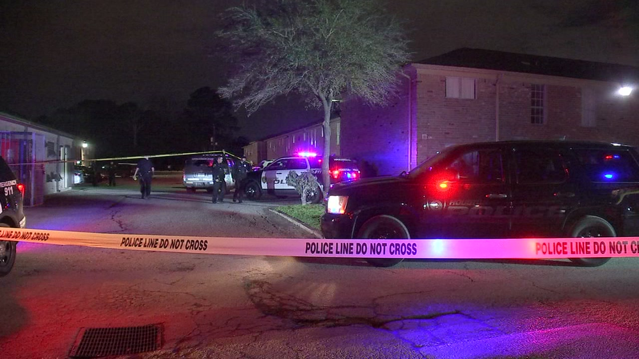 Teens shot, one of them fatally, during fist fight in southwest Houston.