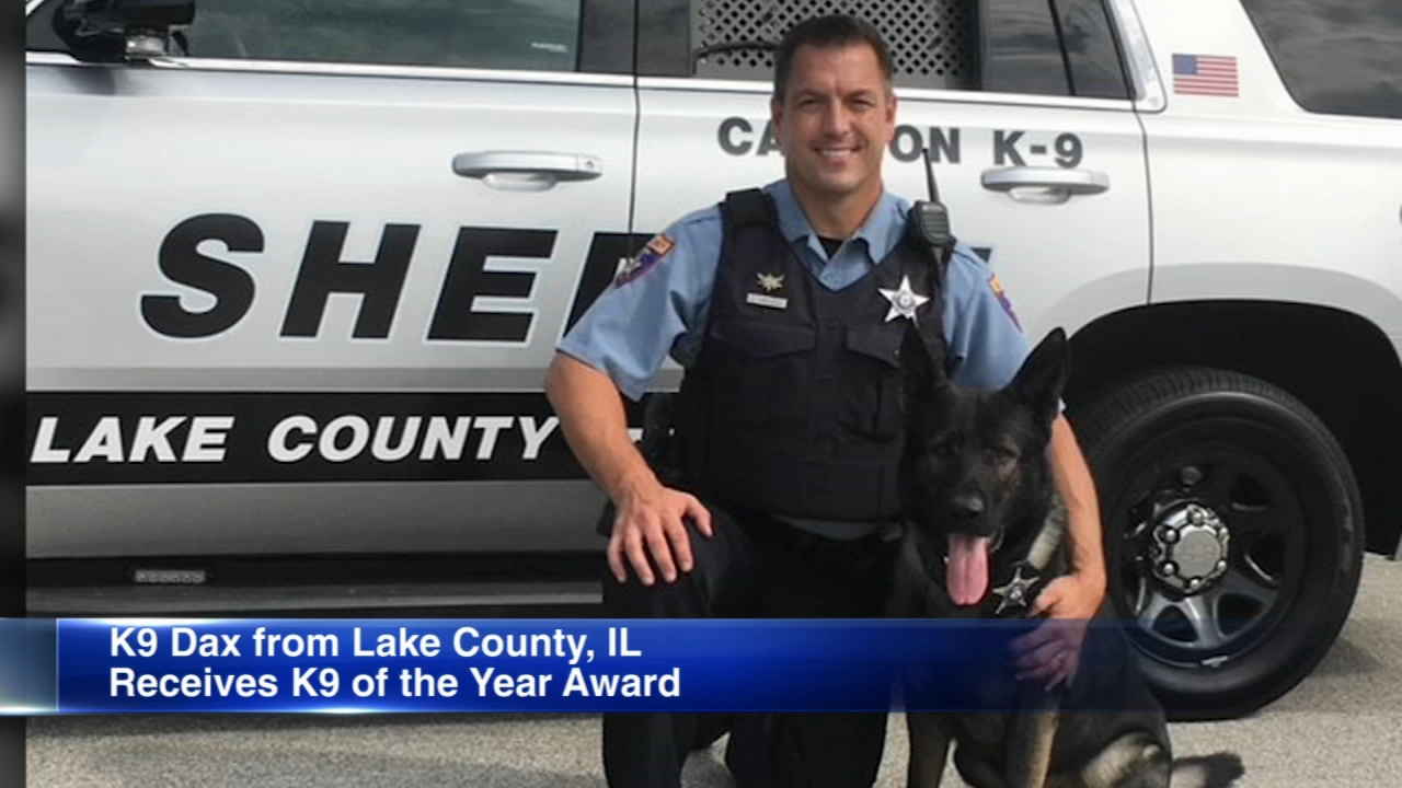 Dax, a Lake County police dog, has been named K-9 of the year.