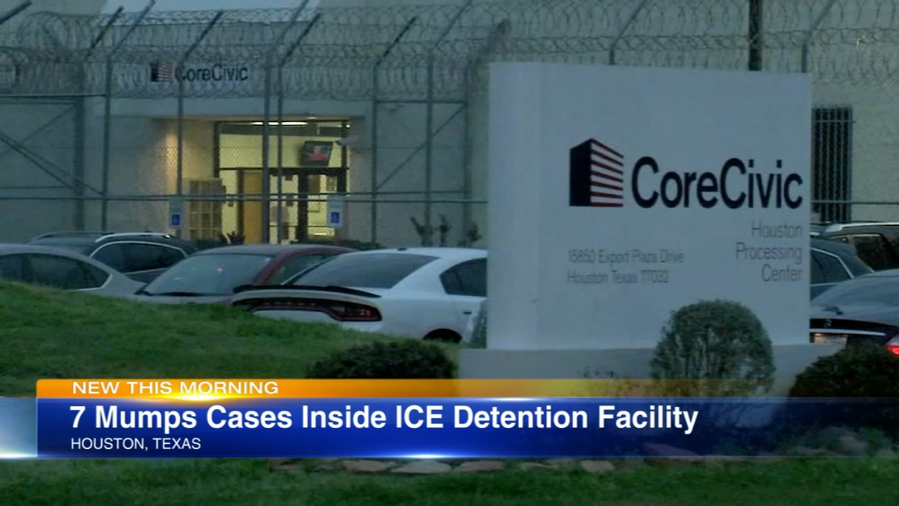 Seven adults have been diagnosed with mumps at an ICE detention center in Houston.