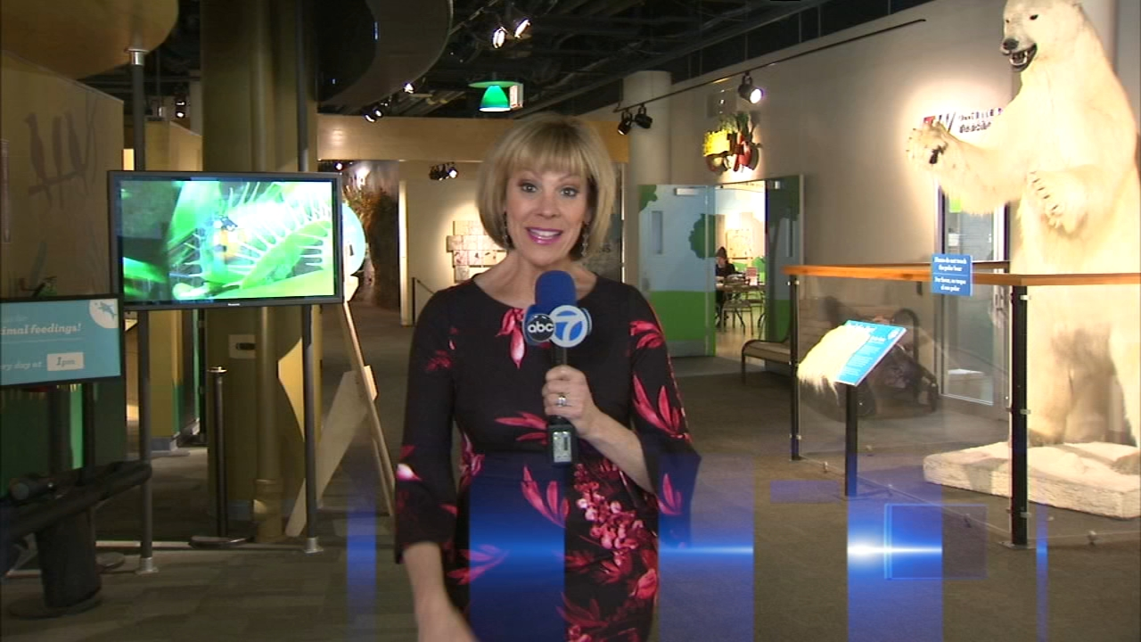 Watch Roz Varons latest Weekender Report.