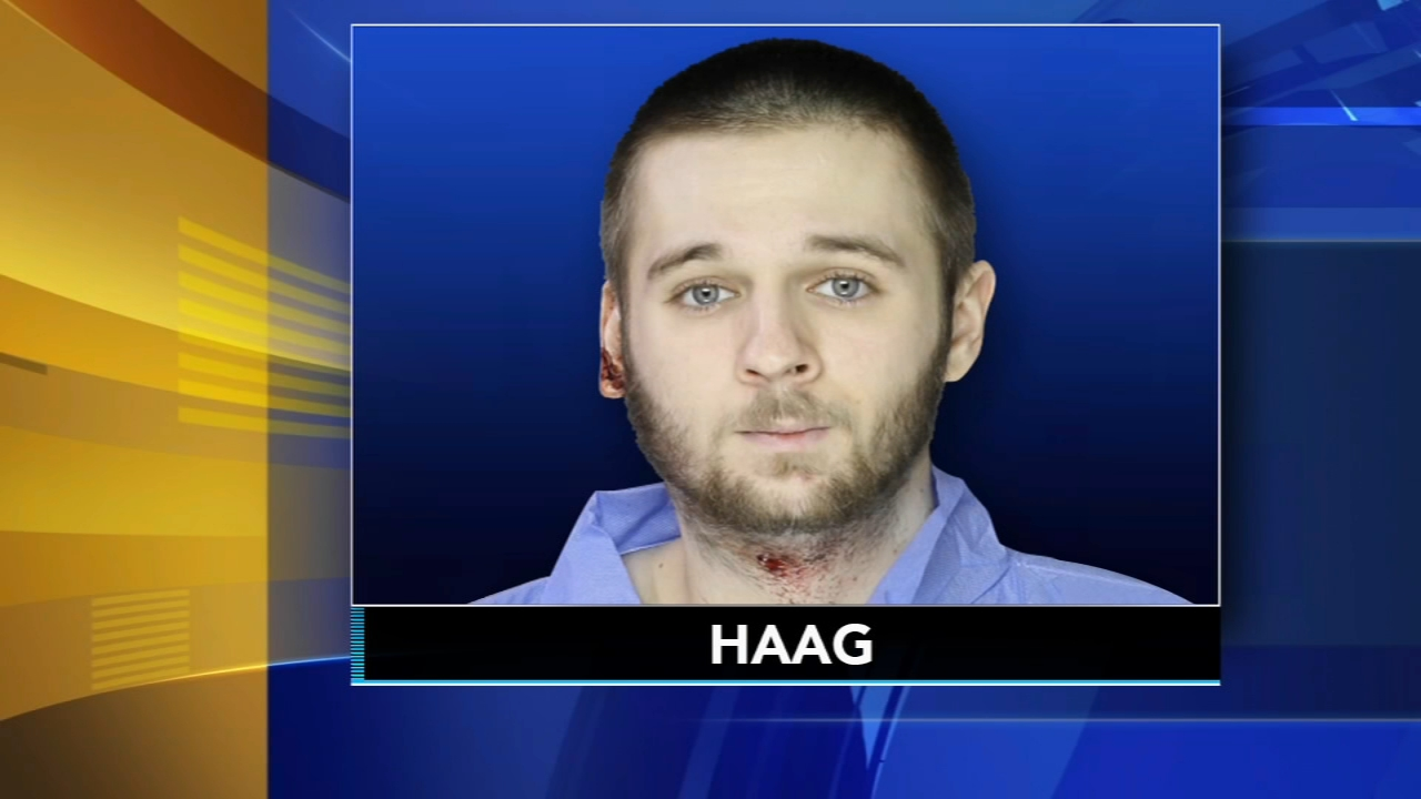 Colin Haag pleaded guilty Thursday to first-degree murder, attempted rape, aggravated assaulted as reported during Action News at 11 on February 14, 2019.