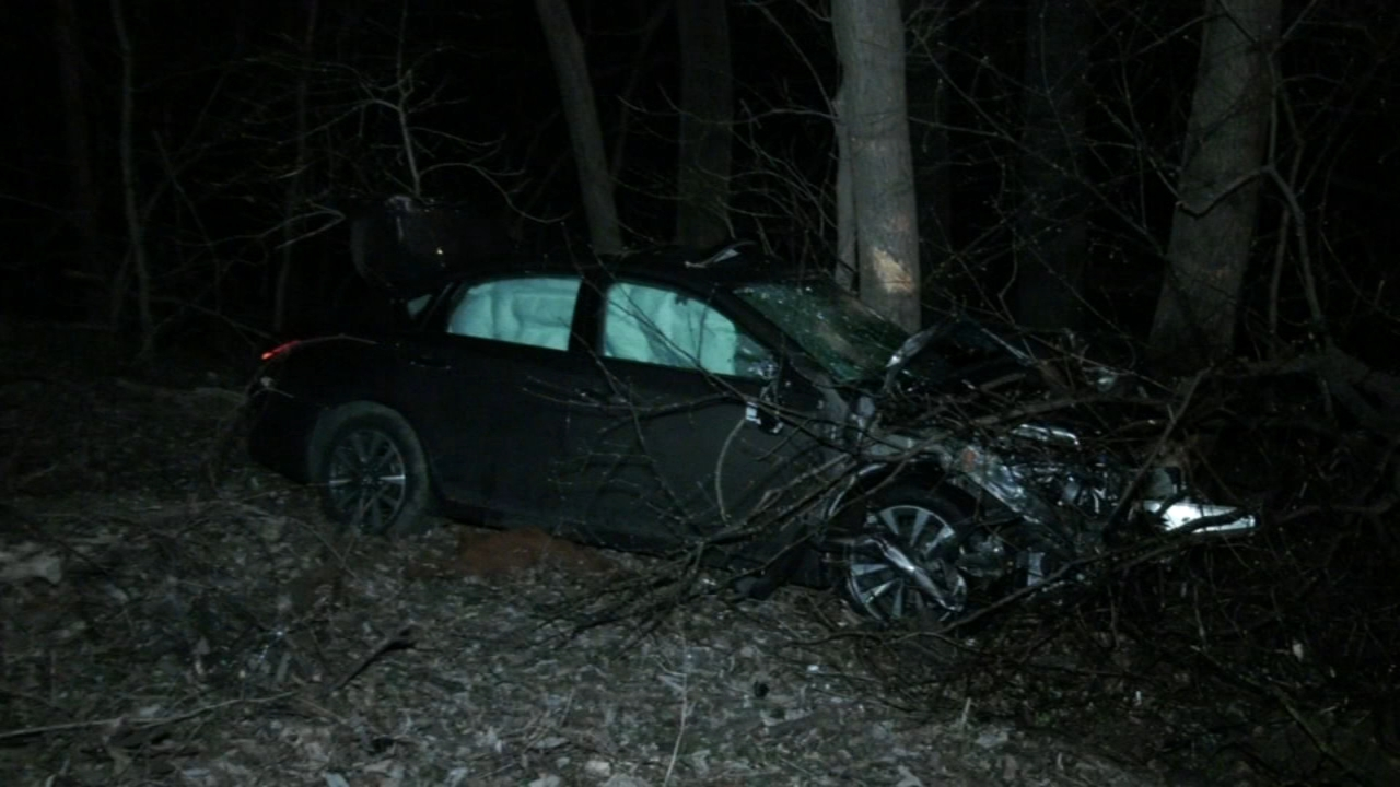 Car rolls down embankment, striking trees in East Oak Lane. Gray Hall reports during Action News at 6 a.m. on February 17, 2019.